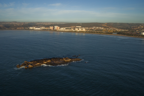 Mossel-Bay-Seal-Island